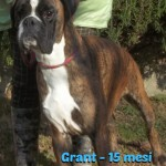 Grant1