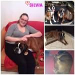 Silvia a casa Collage
