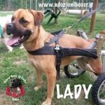 lady-mix