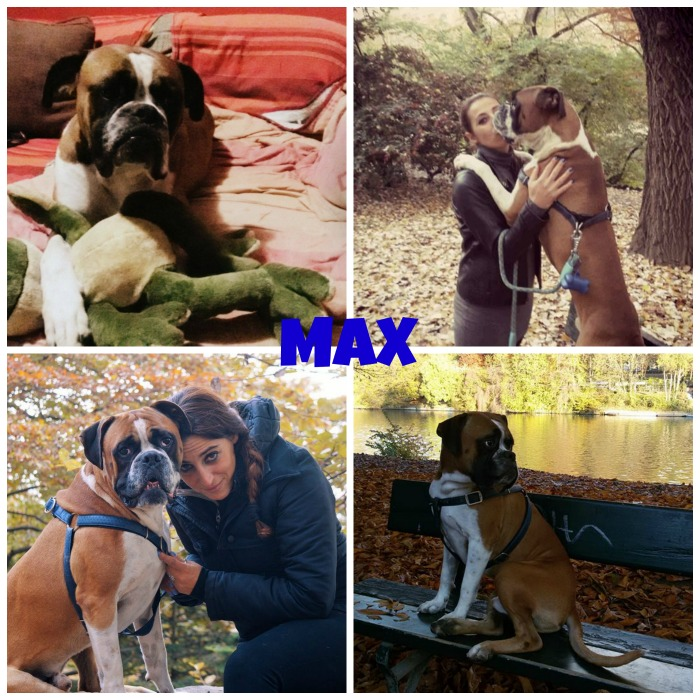 max-a-casa
