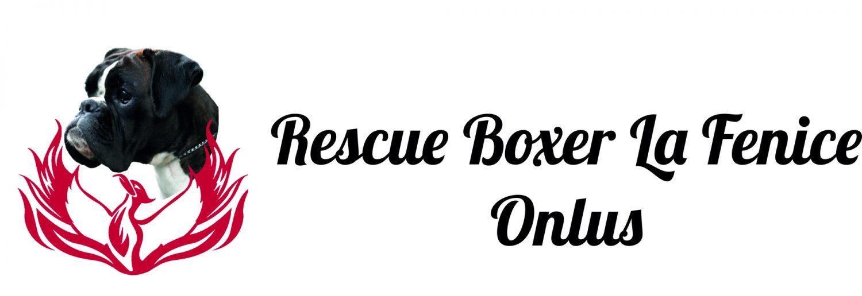 Rescue Boxer La Fenice Onlus