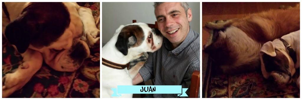 Juan a casa Collage