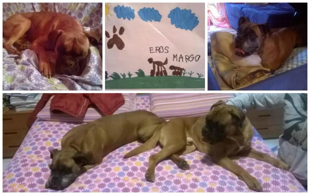 collage Eros Margot