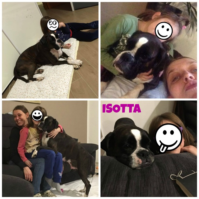 collage isotta